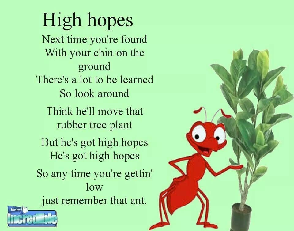 HighHopes